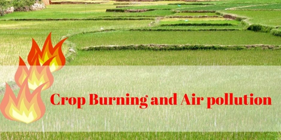Crop Burning and Air Pollution